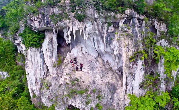 Pintura más antigua del mundo está en Borneo